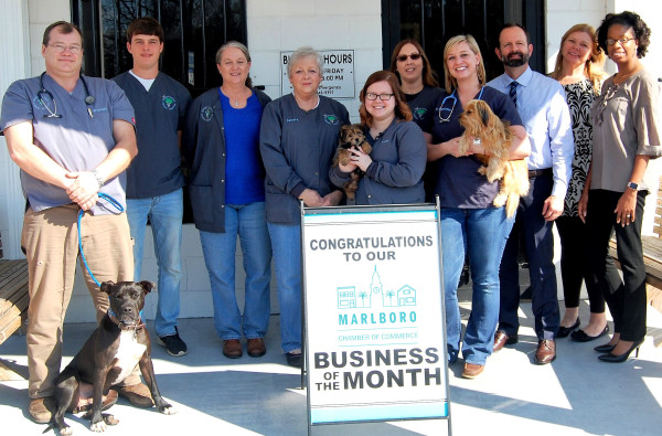 February-Business-of-the-Month-w600.jpg