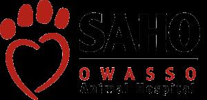 SAHO_Logo-no-BG.png