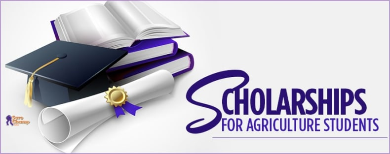 Dickson County Chamber Agriculture Scholarship