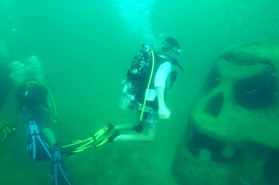 Cultural Arts Alliance of Walton County - Underwater Museum