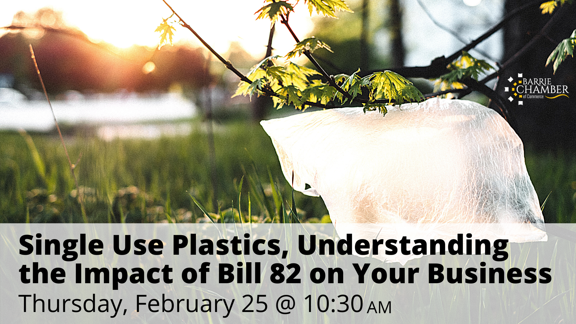 Single Use Plastics, Understanding the Impact of Bill 82 on Your Business, February 25 @ 10:30 am