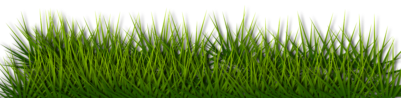 Grass_Border-w1280.png