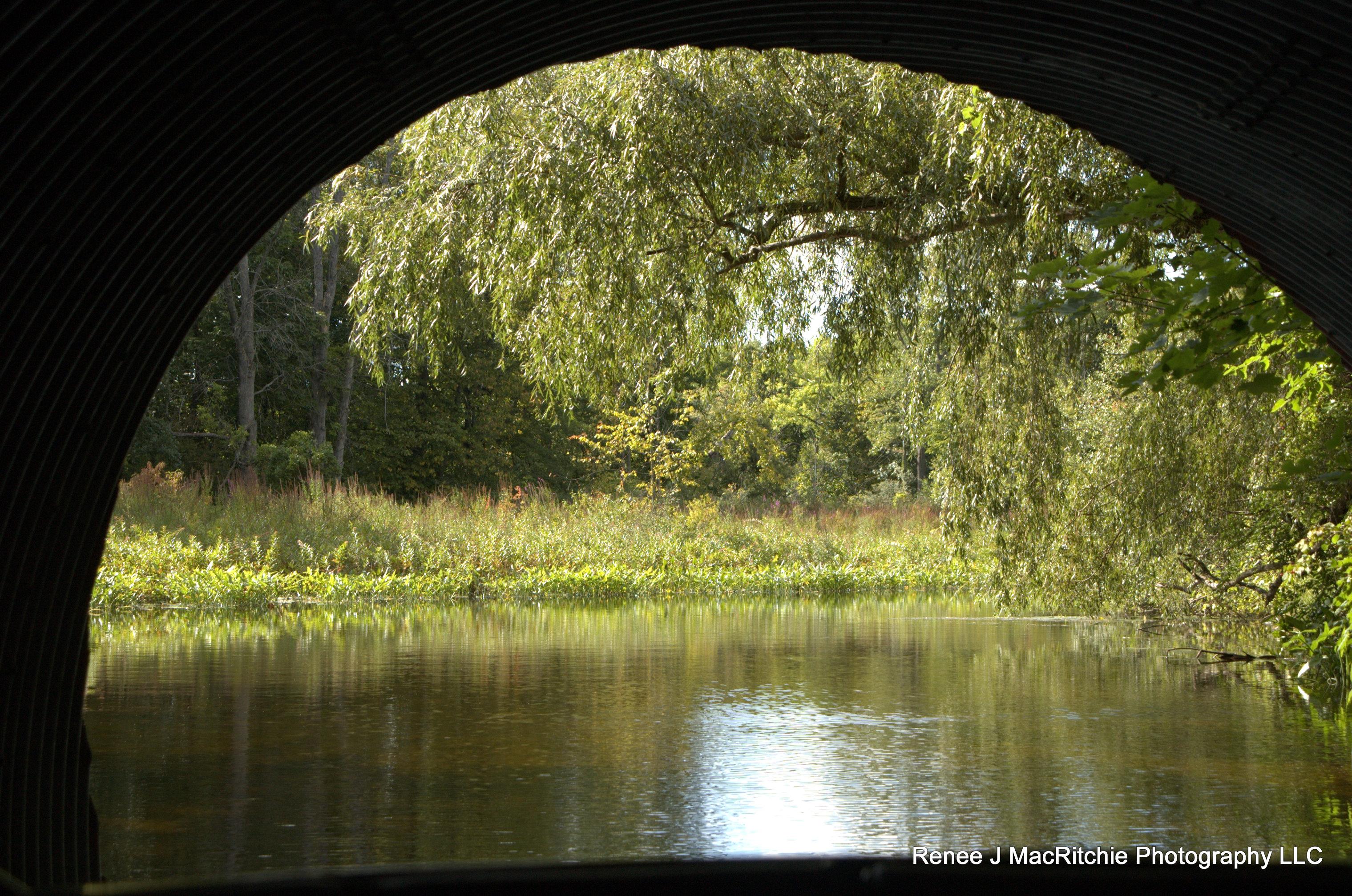 Water_Under_Bridge.jpg