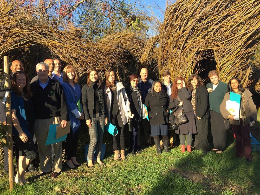 2017 LPA Fellows