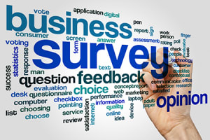 IMAGE-Business-Survey-Small-w300.jpg