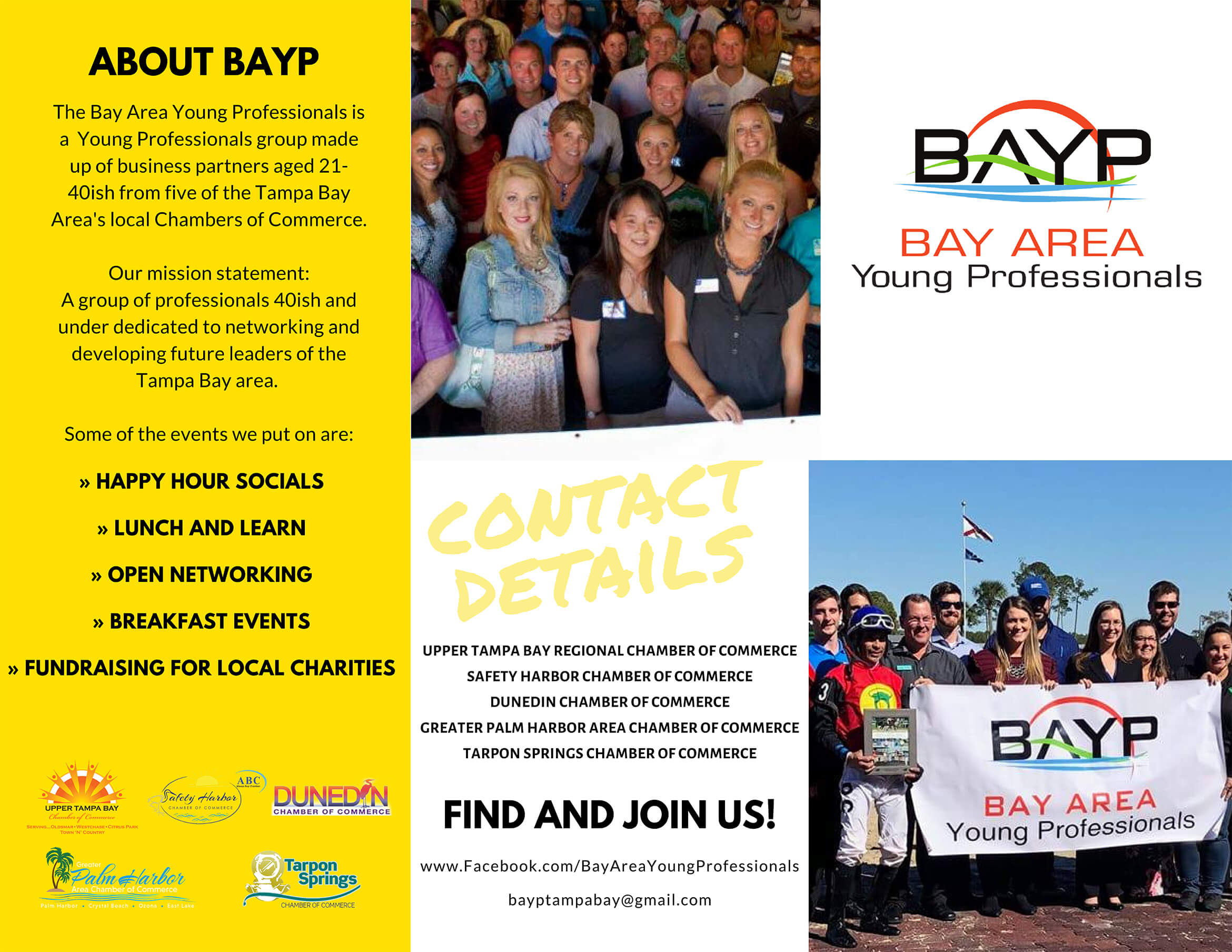 Bay Area Young Professionals