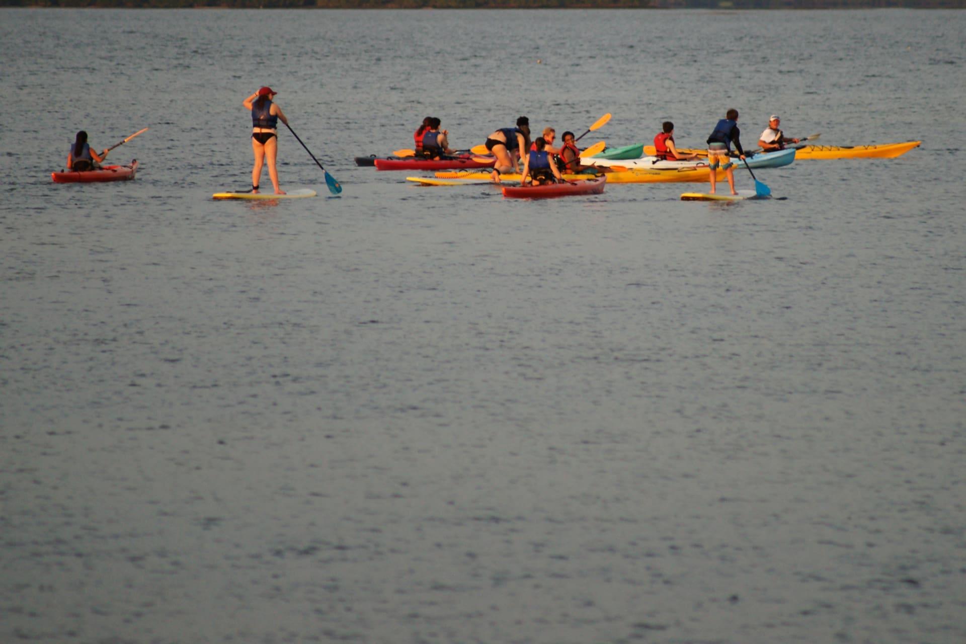 Kayak-Collisions.JPG-w1920.jpg