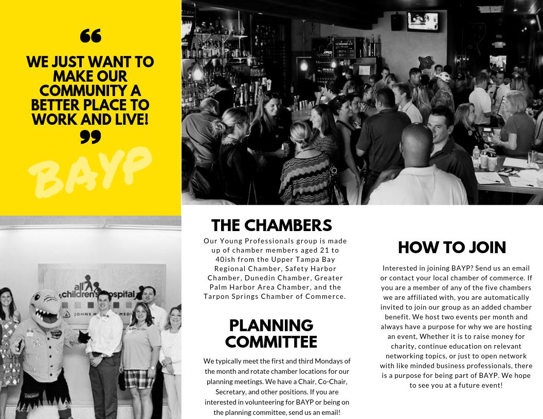 BAYP-Brochure-page-2.png