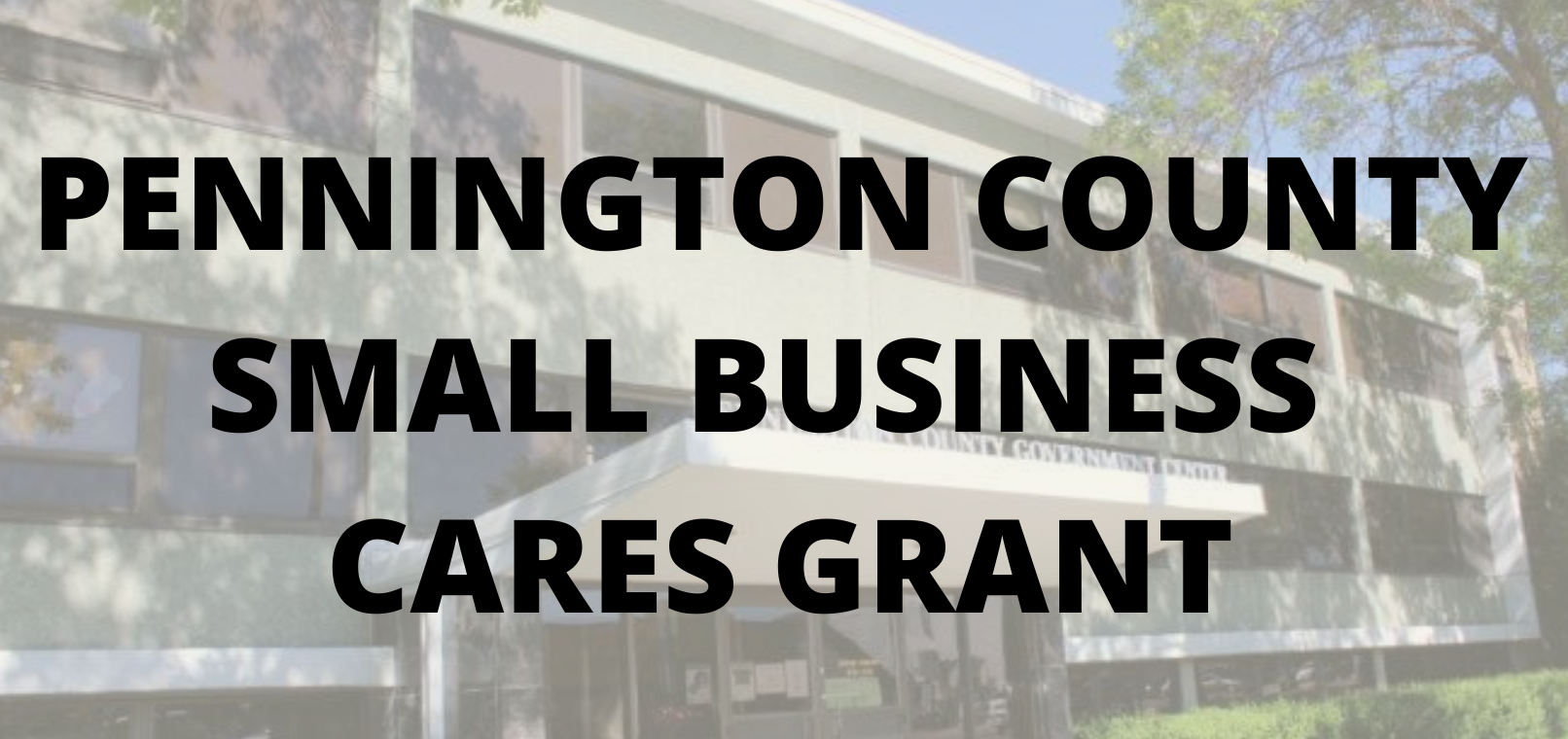Pennington-County-Small-Business-CARES-Grant Application