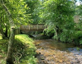 Wolf-Creek-w350.jpg