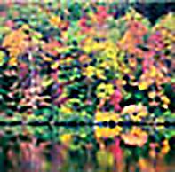 outdoor_22.jpg