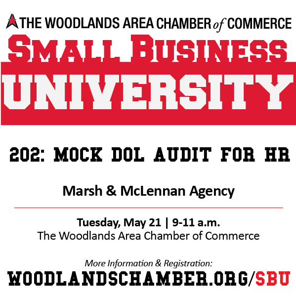 Small Business University 202: Mock DOL Audit for HR