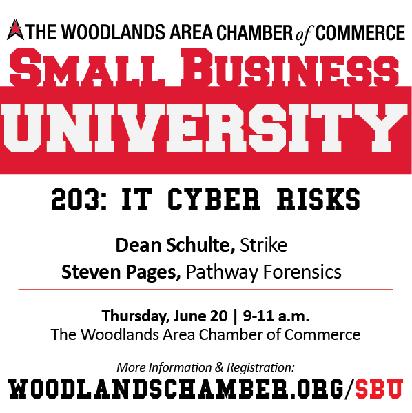 Small Business University 203: IT Cyber Risks