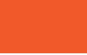 YWCA-Lake-County-Logo-Small.png