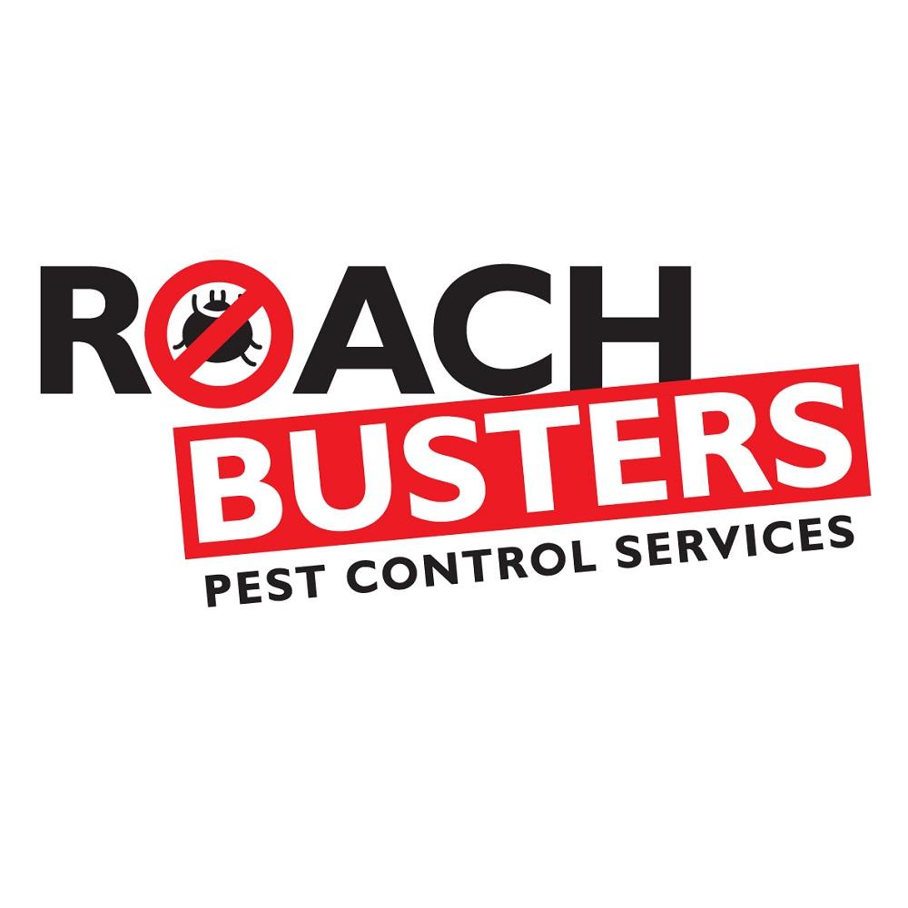 Roach-Busters-01-01.jpg