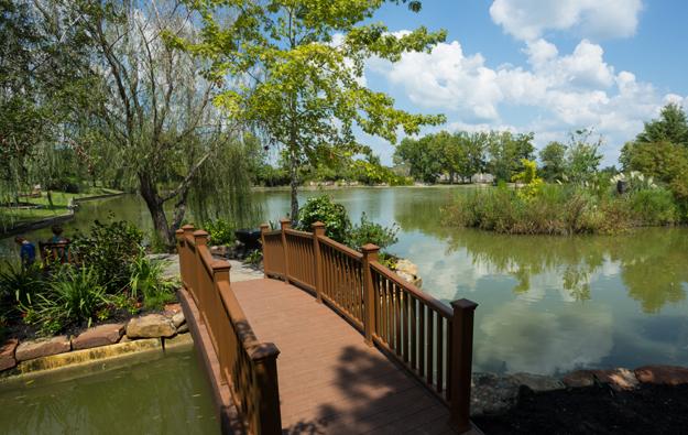 Park-Pond.jpg