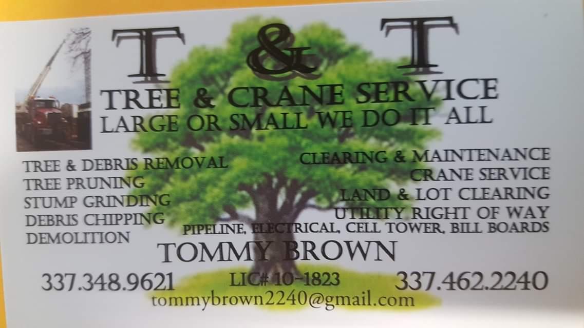 TandT-Tree-Service.jpg