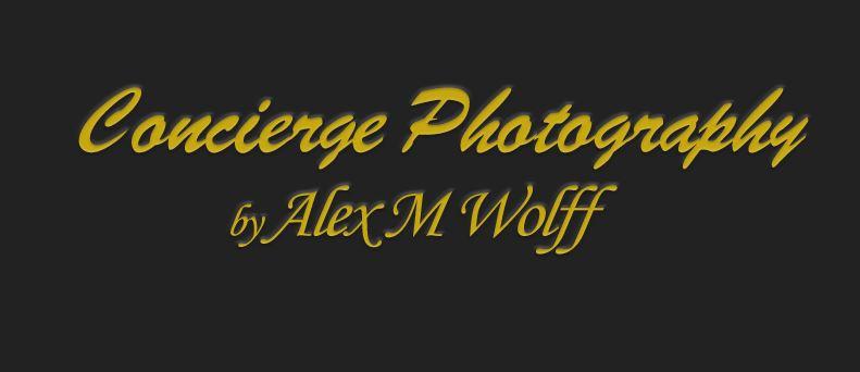 wolf.logo.JPG