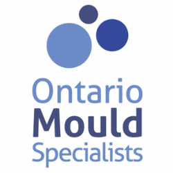 ontario-mould-specialists.png