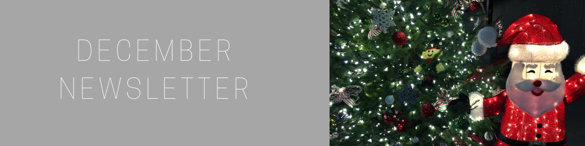NEWSLETTER-December.png