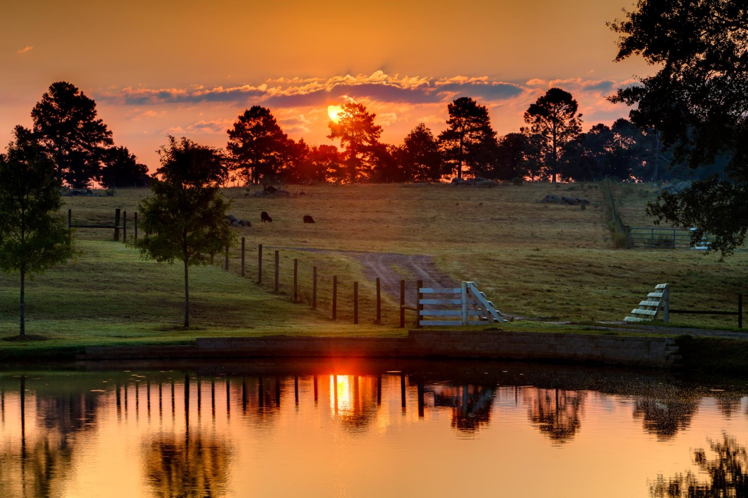 sunrise_at_rock_ranch-w1500.jpg