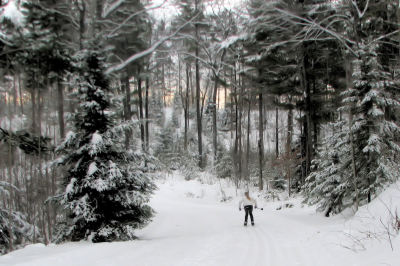 Cross-country ski and snowshoe trails