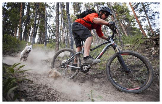 bike-trail-homepage-slider-w546.png