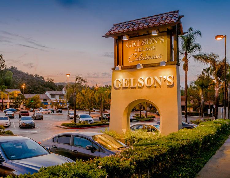 Gelson's-Village.jpeg