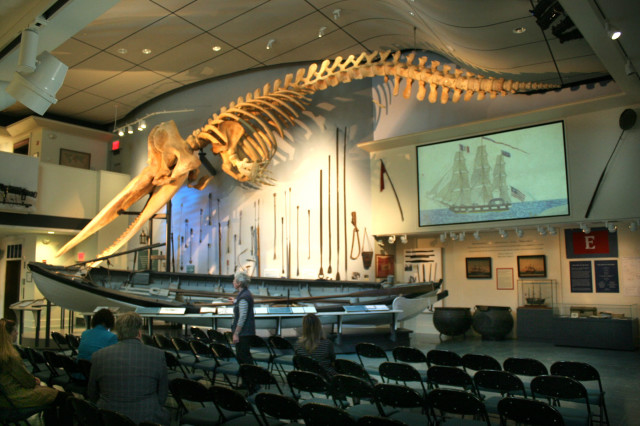 Whaling-Museum(1).jpg