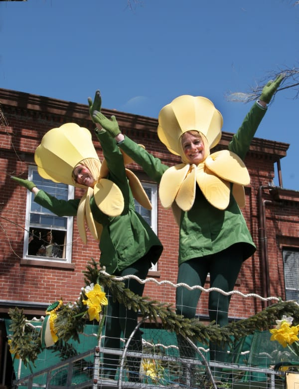 Daffy-Hats-X6--w600.jpg