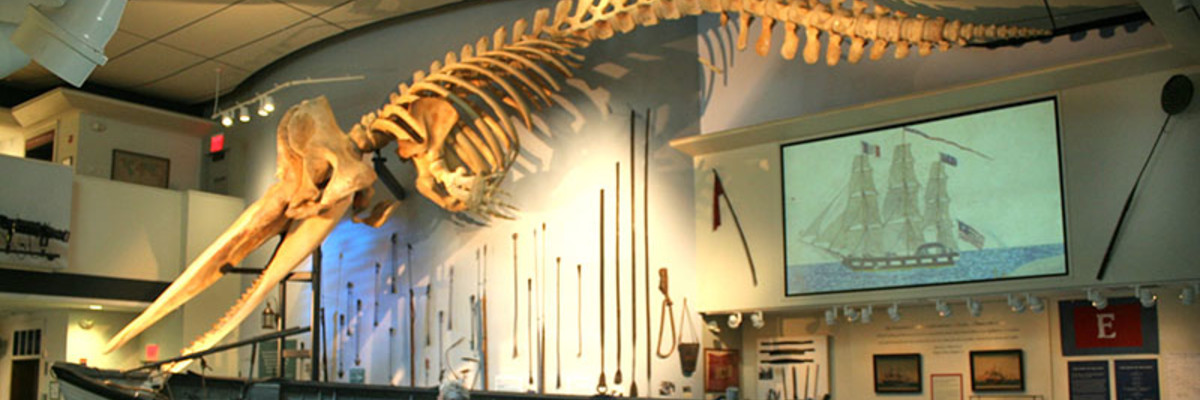 Whaling-Museum(2).jpg