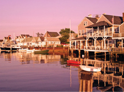 Purple Harbor