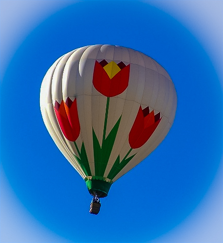 Bloomin'-balloon.jpg