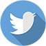 Twitter-Icon-w67.png