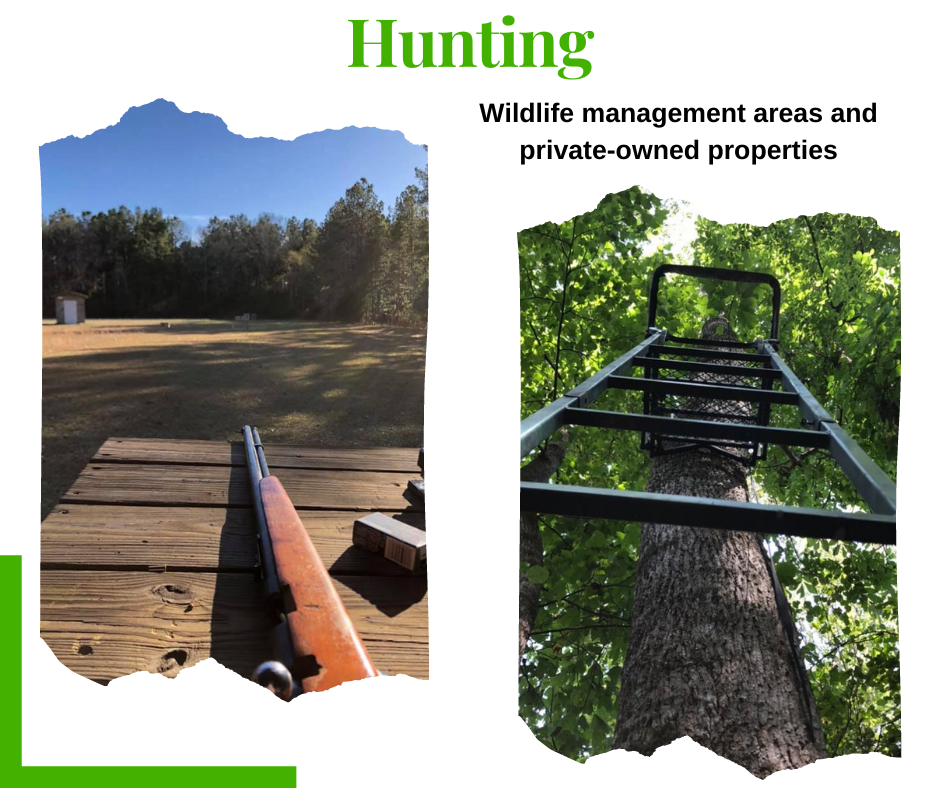 Website_-Outdoors-hunting.png