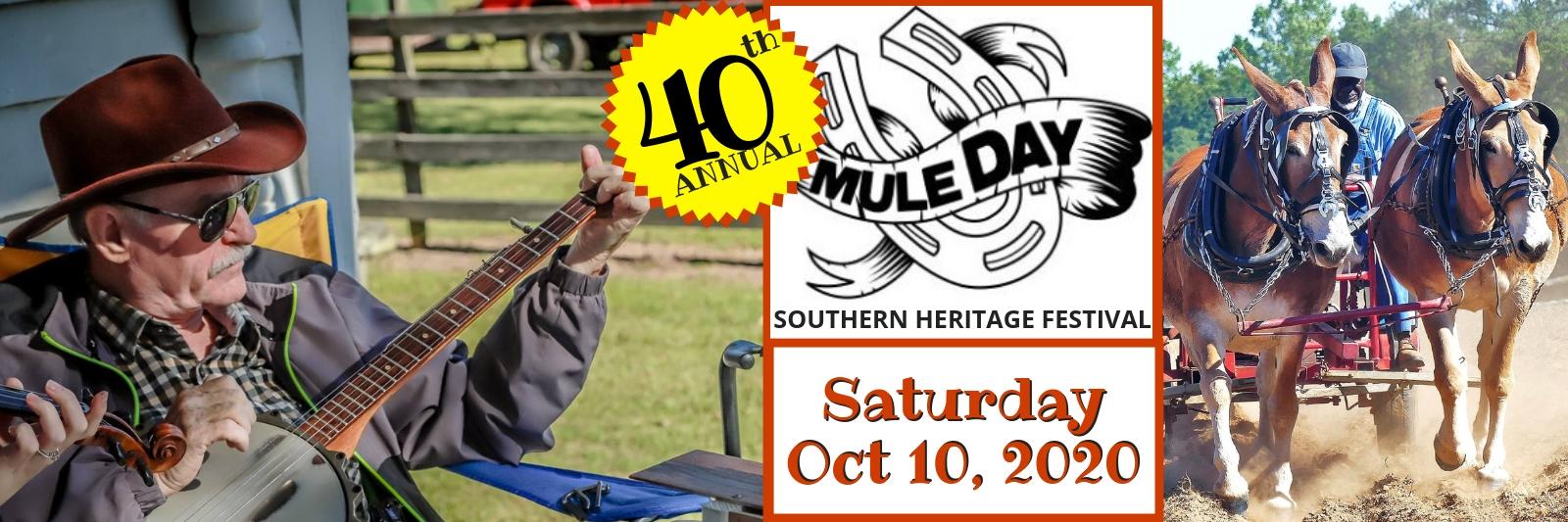 Web-Sliders-40-Ann-Mule-Day.jpg