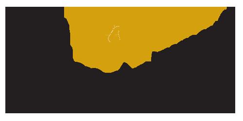 slide_chamber_logo.png