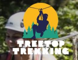 treetop-trekking.jpg