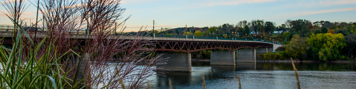 Owego-Bridge-6-smaller.jpg