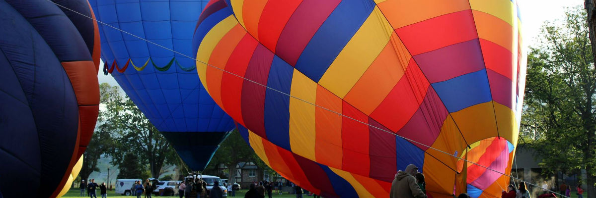 Balloons-by-Dawn-Hoobler-resized.jpg