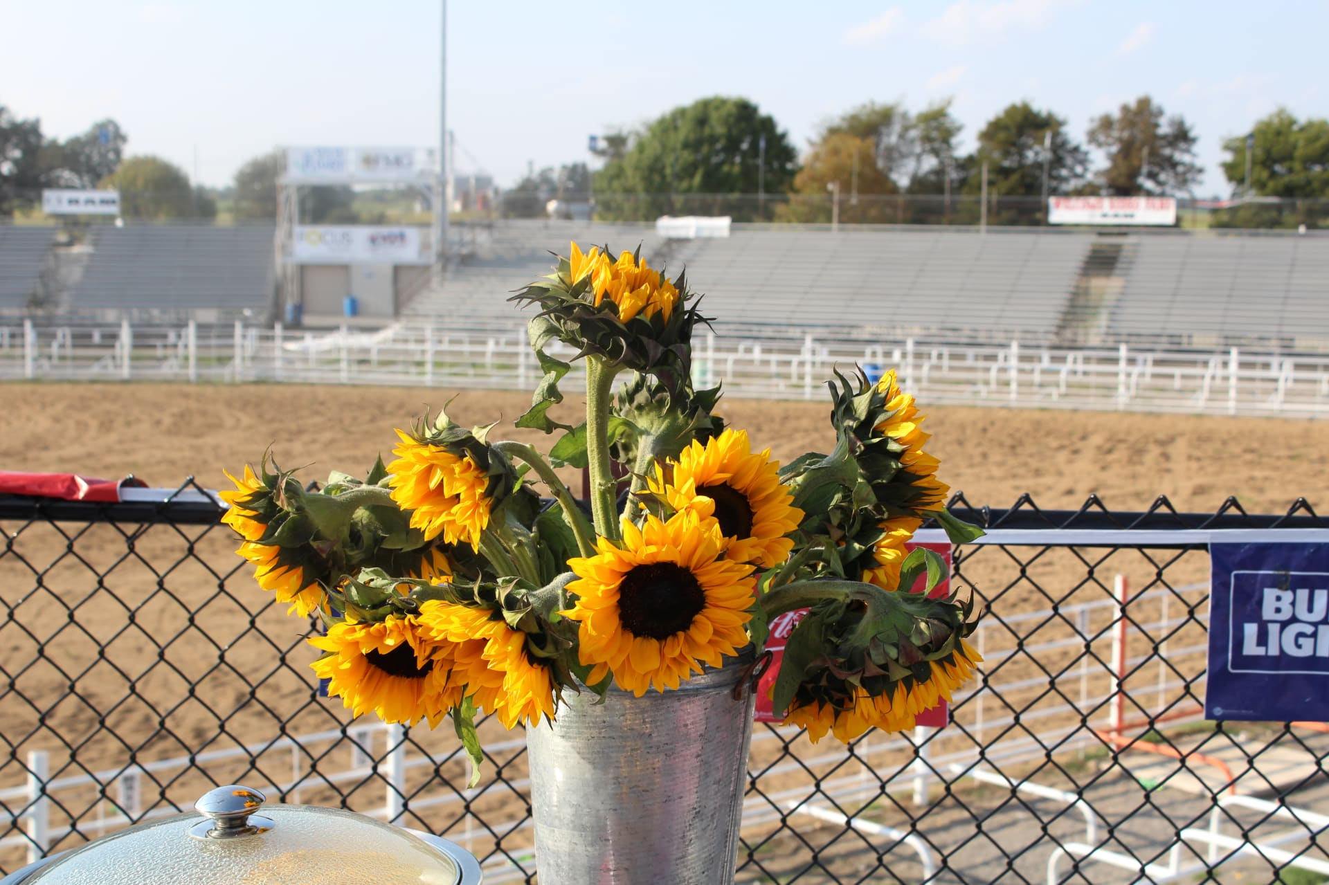 Rodeo-Grounds_SunflowerIMG_2890---Copy.JPG-w1920.jpg