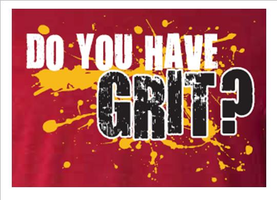 Image result for Grit, Education