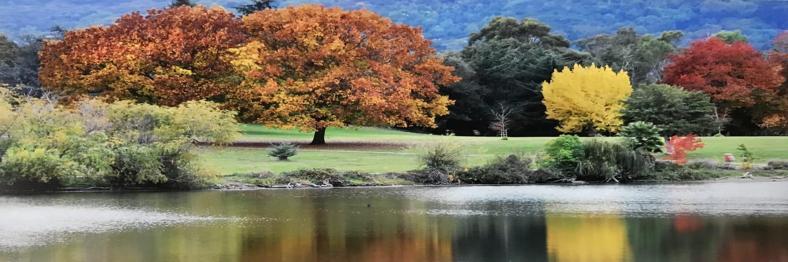 Fall-Vasona-Lake-w1600.jpg