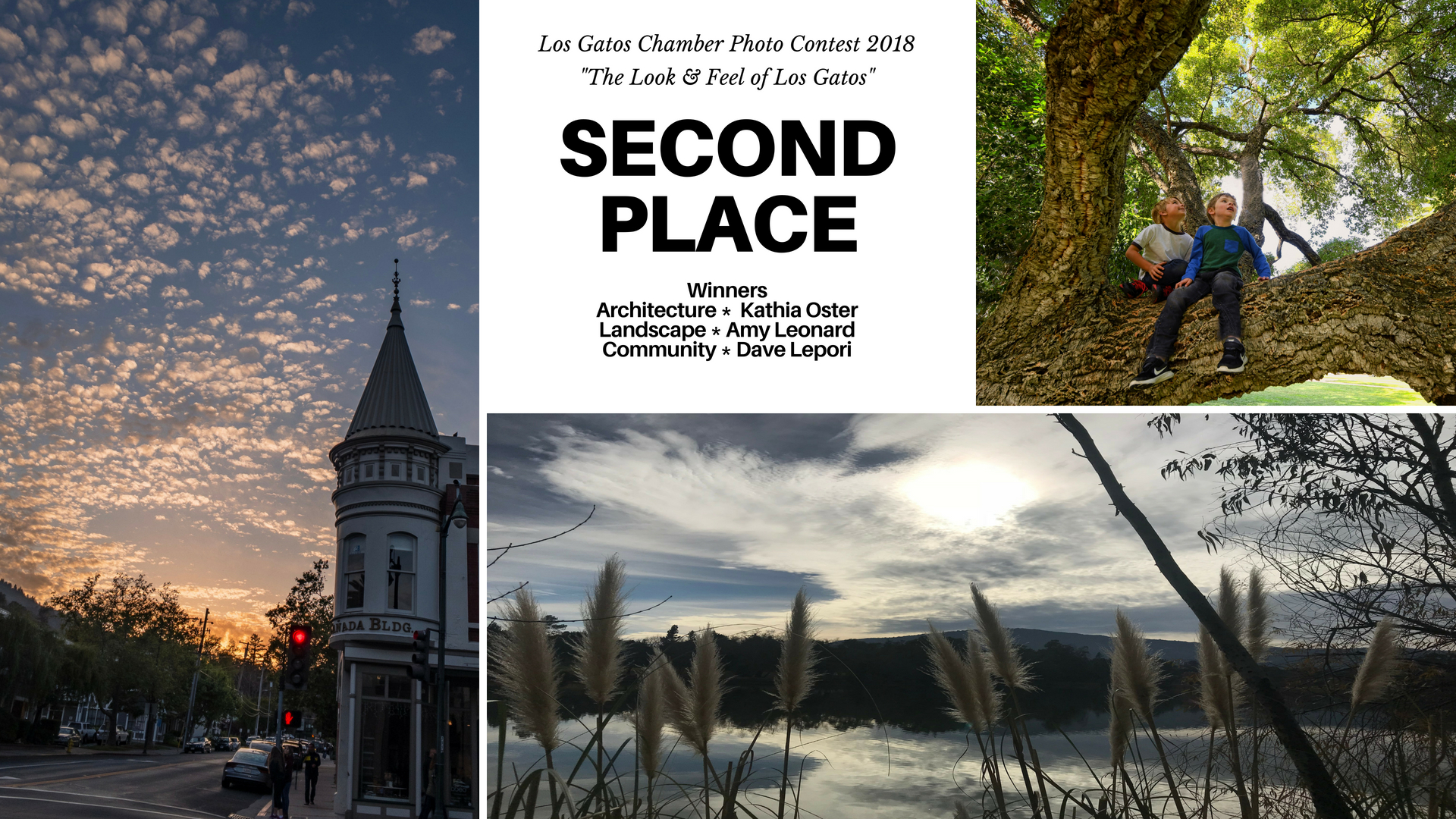 Photo-Contest-Winners-2nd.jpg