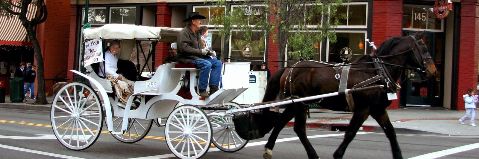 carriage-ride-w1600.jpg