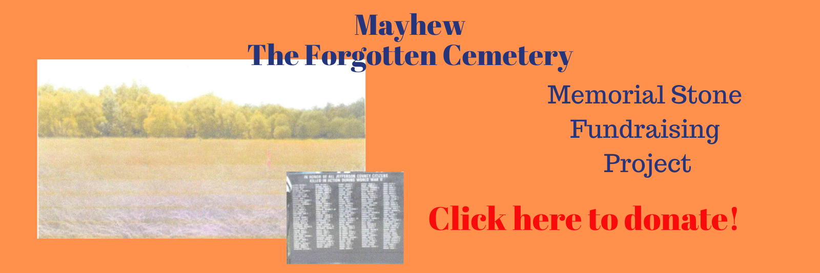 Mayhew-The-Forgotten-Cemetery-website-cover.png