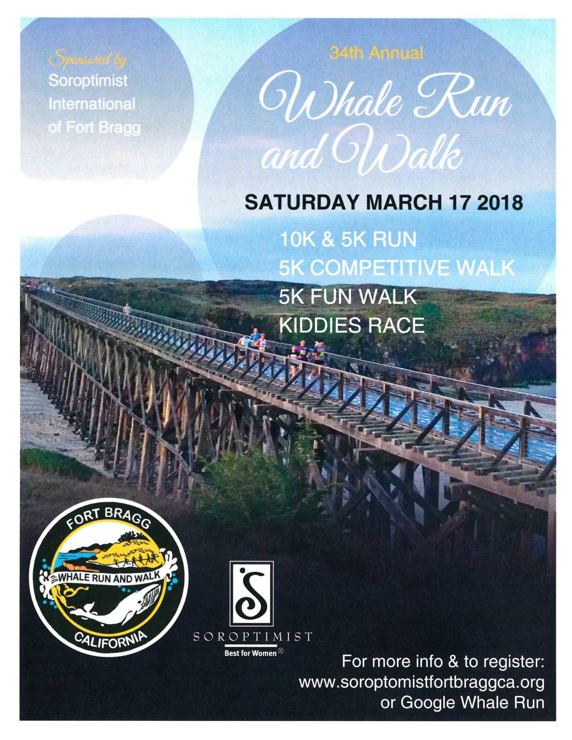 Whale Run and Walk