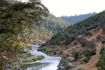American-river(1).jpg