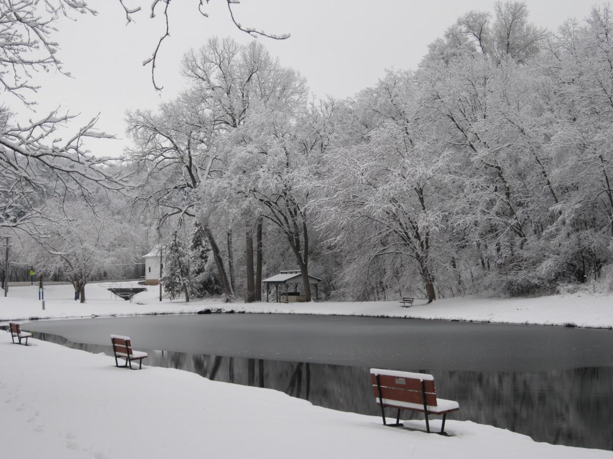 2011-first-snowAnnaVs-w1200.jpg