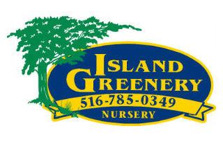 island-greenery.jpg